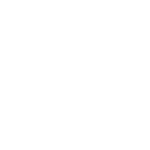 logo rsf-06