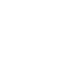 logo rsf-08